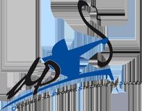 logo DPS2